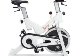 Sunny SF-B1110 Indoor Exercise Bike