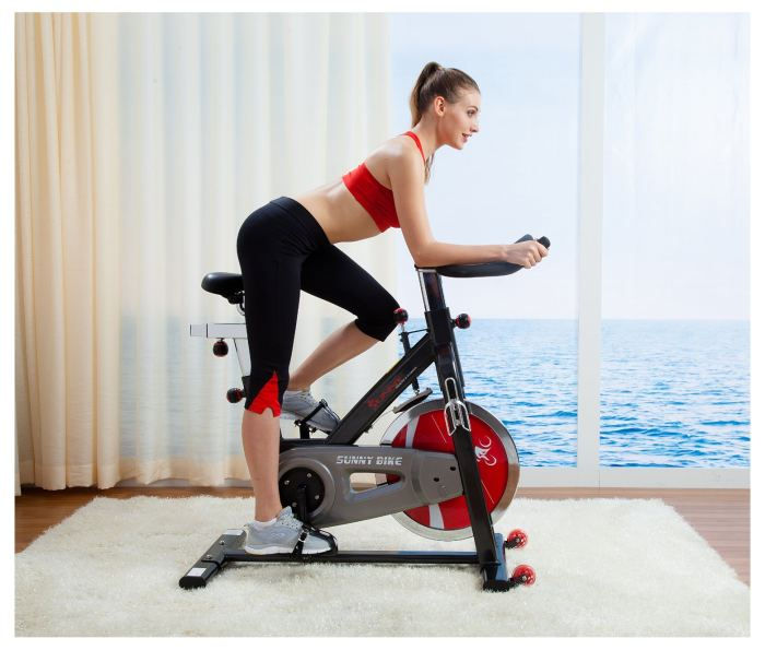 Sunny SF-B1002 Belt Drive Indoor Cycling Bike Review