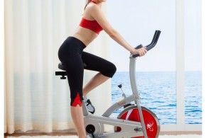 Sunny SF-B1203 Indoor Cycling Bike Review