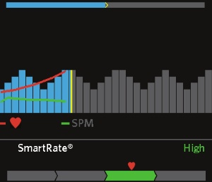 SmartRate tracks your heart rate as a percentage of your maximum, the displays it in a category