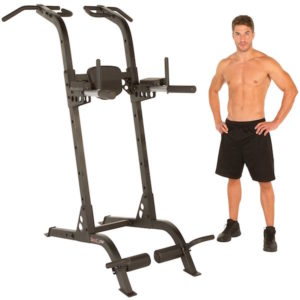 Fitness Reality X Class Power Tower
