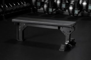 Side view Rogue Monster Utility Bench