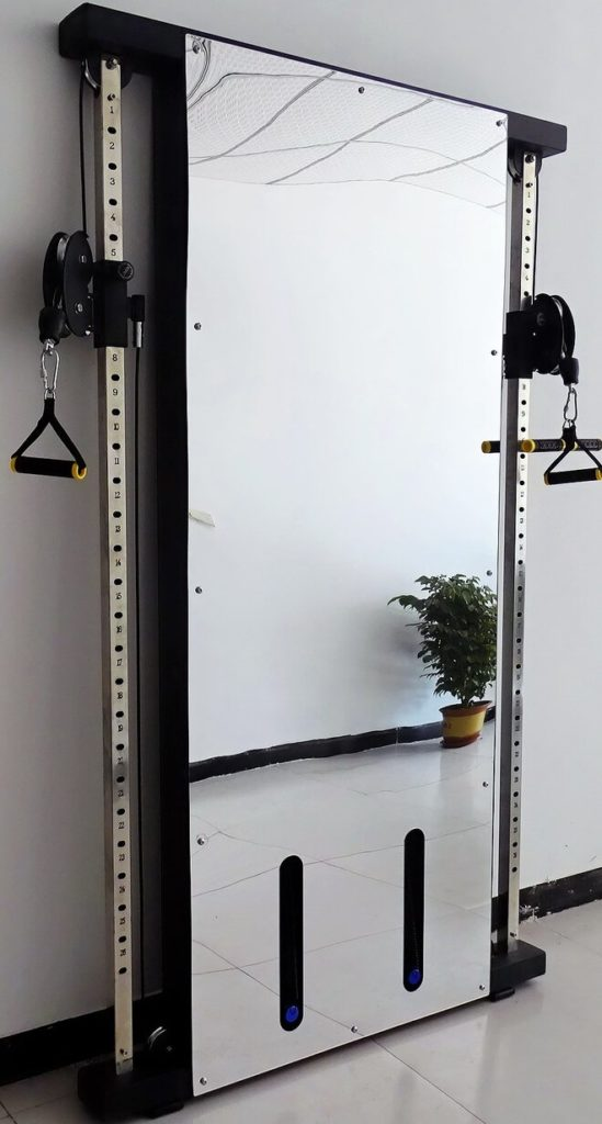 French Fitness Wall Monted Mirror Functional Trainer featured image